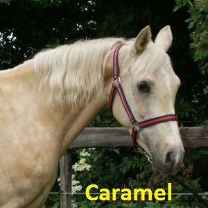Caramel klein