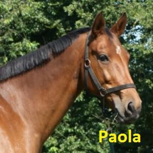 Paola klein